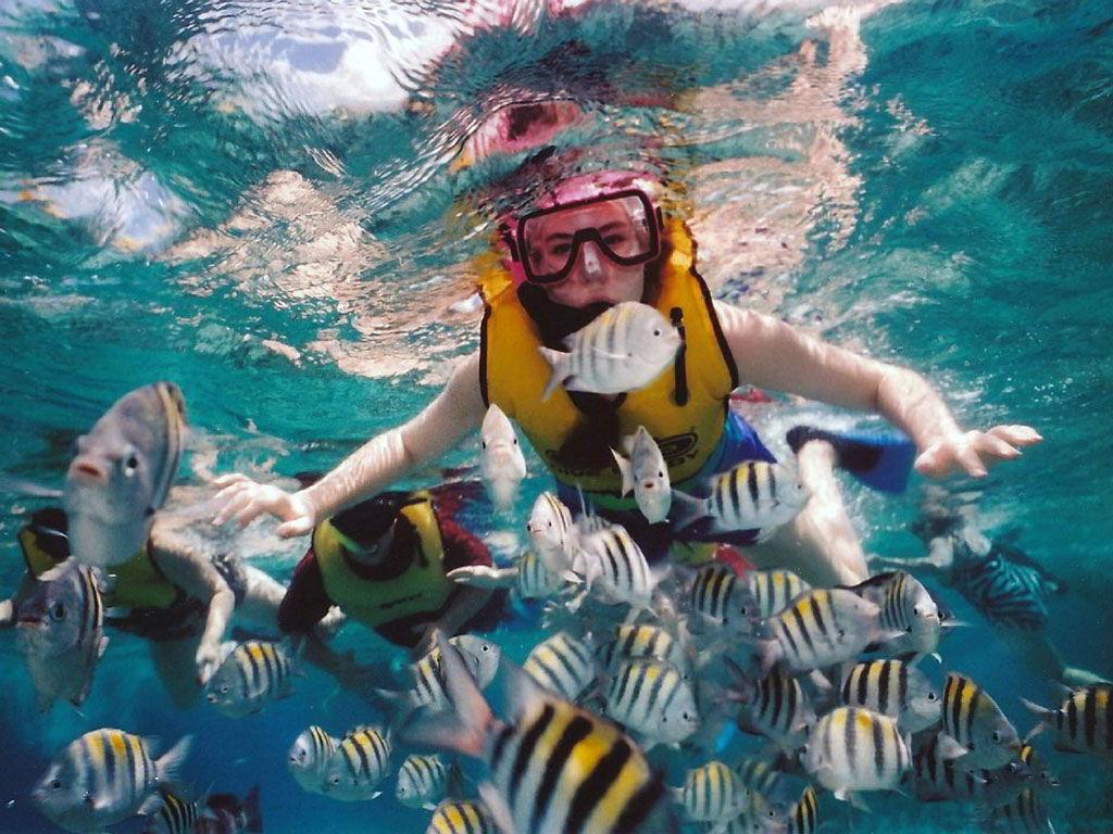 snorkel_tulamben_bali_diving
